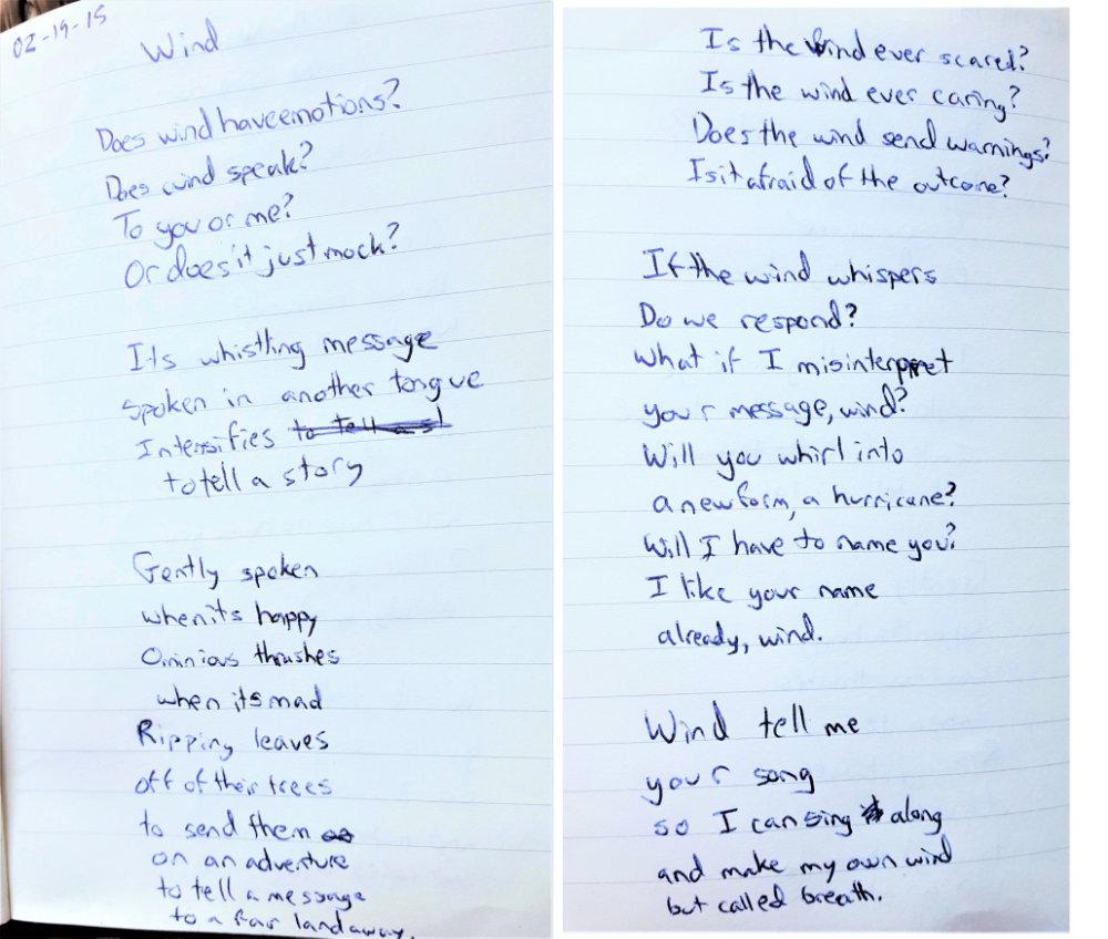 Wind Poem by Brendan Tobin
